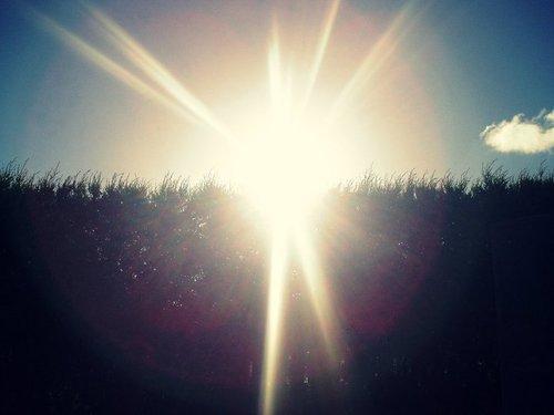 nature-photography-pretty-sunshine-favim-com-148632