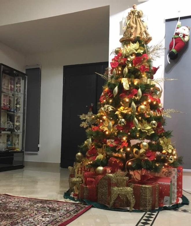 my christmas tree is up nishlovepink - My Christmas Tree